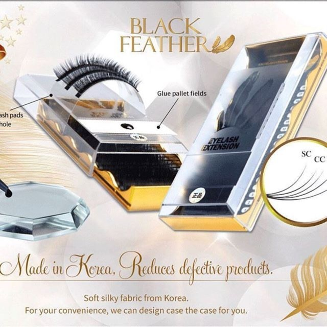 Black feather blakstienos